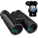 APEMAN Fernglas 10x42 Kompaktfernglas für Vogelbeobachtung, Wandern, Jagen, Sightseeing, Kleines...