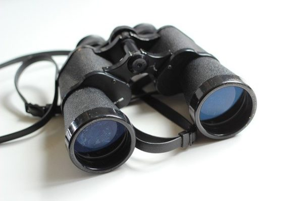Kriterien für den Fernglas-Kauf