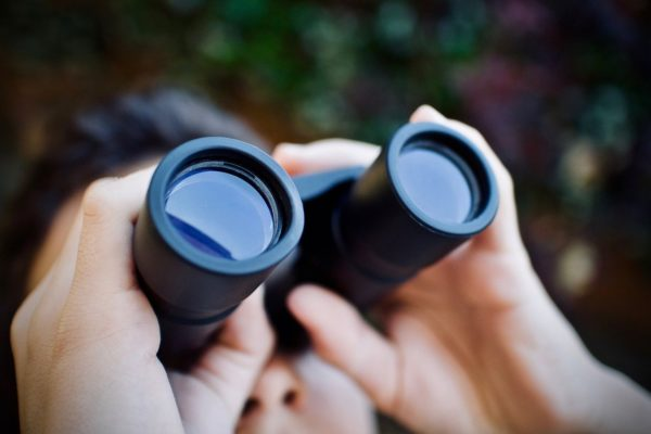 Welche ist die beste Vergrößerung beim Fernglas?